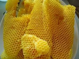 PHYSICO-CHEMICAL PROPERTIES OF BEESWAX FROM FOUR DIFFERENT HONEY BEE (Apis) SPECIES